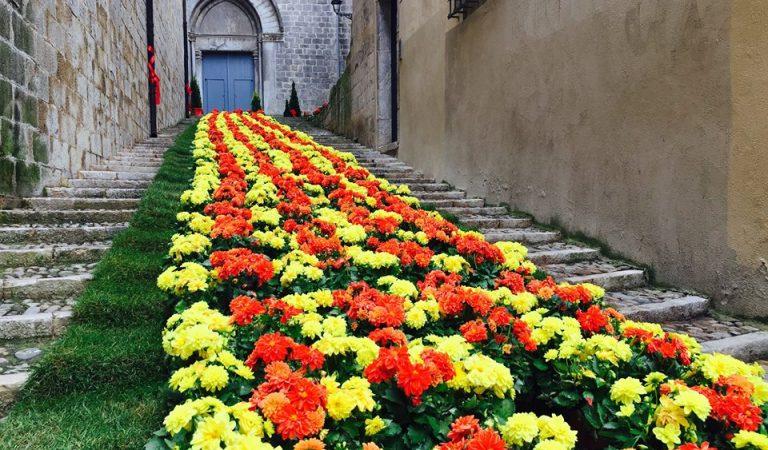 Girona Temps de Flors – La Senyera