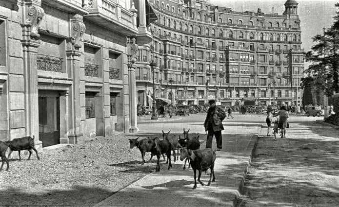 Barcelona Abans – Ramat de cabres pasturant a la Plaça Francesc Macià – 1945