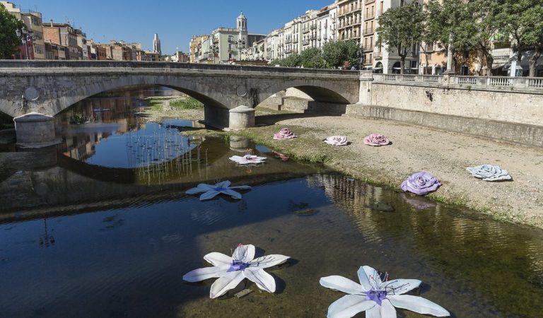 Prova pilot en sis restaurants de Girona que podran obrir a les nits per oferir sopars