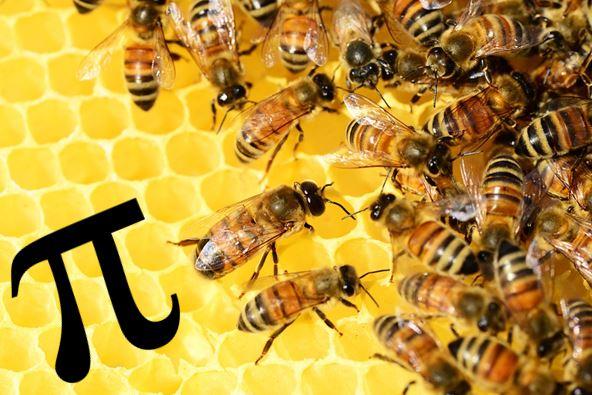Les abelles i el nombre Pi = 3,1416…