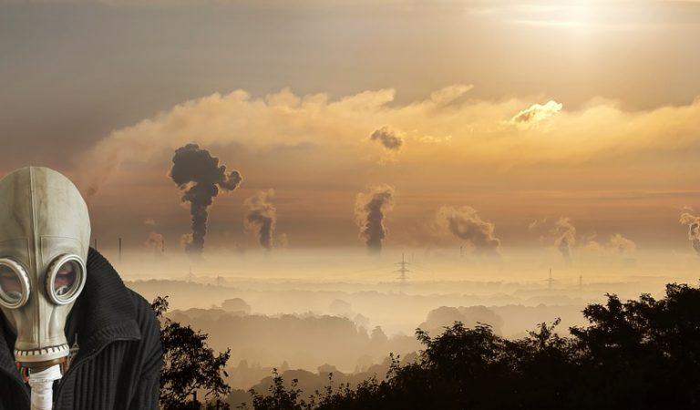 Un jutjat de Barcelona admet a tràmit una demanda per contaminació.