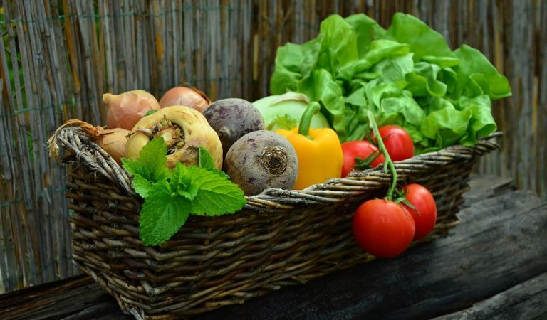 Detecten hortalisses amb contaminants orgànics al Baix Llobregat i el Garraf