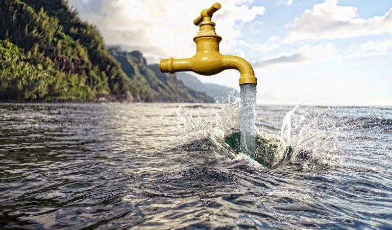 Avui celebrem el Dia Mundial de l'Aigua