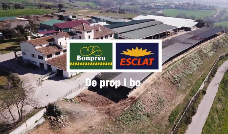 Bonpreu i Esclat recapta en menys de dos mesos 170.000 € per causes socials.
