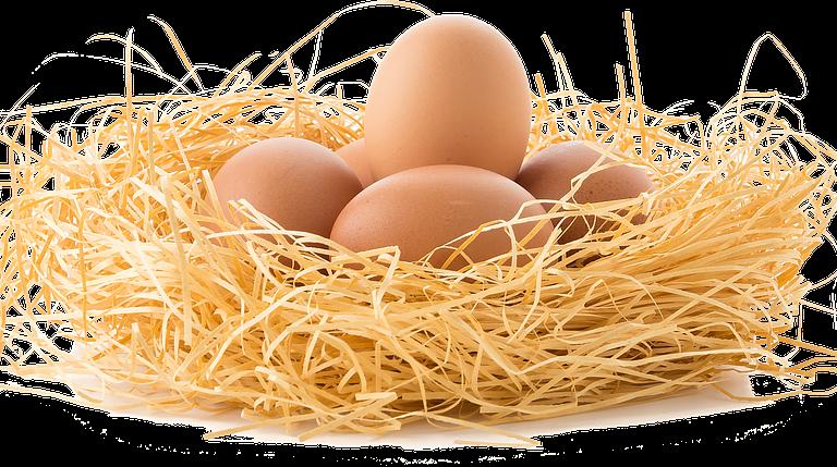 Per què fiquem els ous a la nevera si a la botiga estan fora?