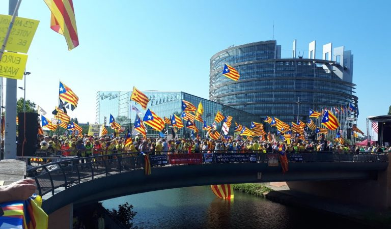 El Parlament Europeu s'omple de catalans amb Estelades.