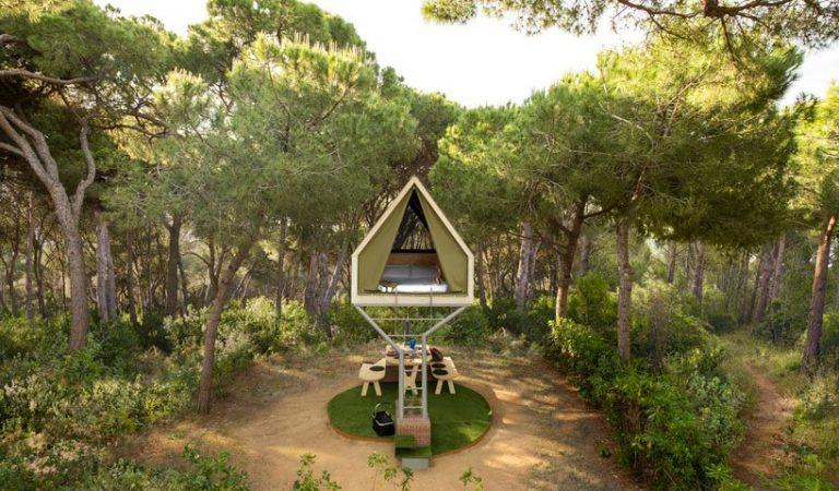 Sempre has somiat en dormir en una cabana dalt d'un arbre? Ara ho pots fer realitat.