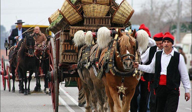 La tradició de la Festa dels Tres Tombs, aquest any marcada per la pandèmia
