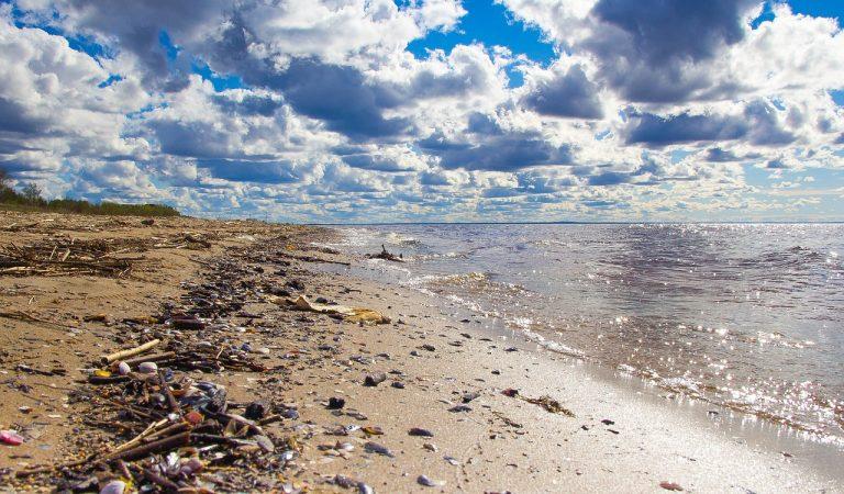 Cap de setmana de neteja de platges – Us animeu?