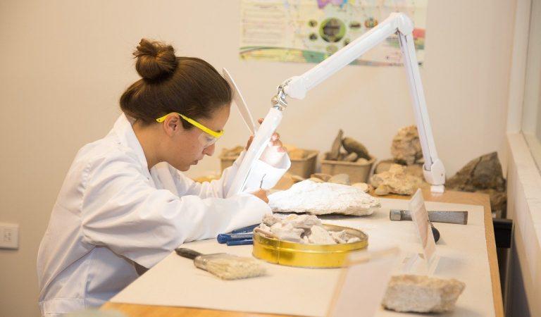 11 de Febrer – Dia Mundial de la Dona i la Nena en la Ciència