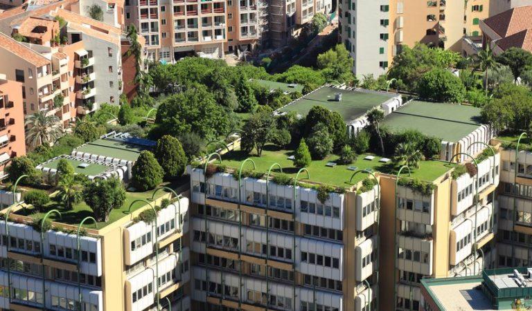 Segon Concurs de Cobertes Verdes a la Ciutat de Barcelona