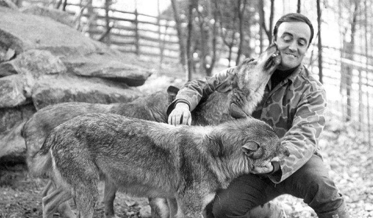 FélixRodríguez de la Fuente,40anys de la mort de l'home que ens va ensenyar a estimar la natura.