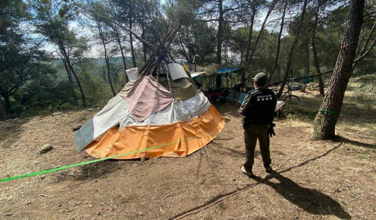 Tallen arbres per instal·lar una acampada en mig del bosc i fer una calçotada a la zona de Gaià (Bages)