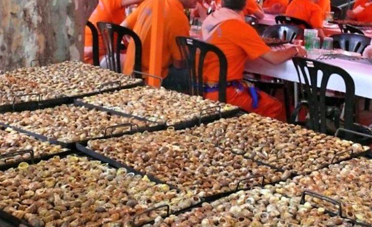 L'Aplec del Caragol de Lleida s'ajorna fins a l'octubre, però es posen a la venda pacs per fer-los a casa.