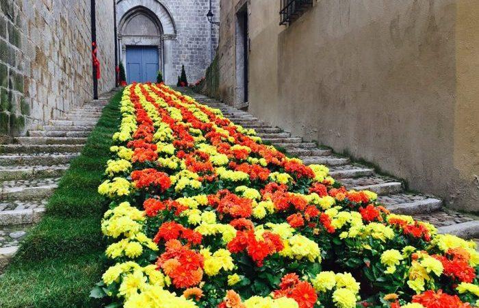 Comença la setmana de Girona sense Temps de Flors.