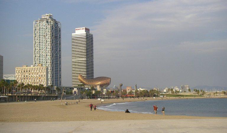 A partir de demà obren les platges de Barcelona, però tan sols per fer esport