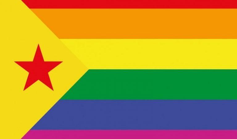 El Suprem veta l'exhibició de banderes no oficials en edificis públics