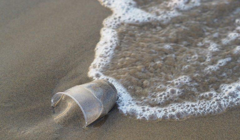 Una empresa catalana crea un material biodegradable que podria substituir al plàstic