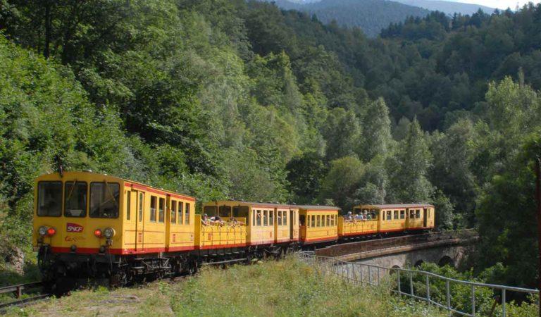 Omplen de pintades el Tren groc de la Cerdanya.