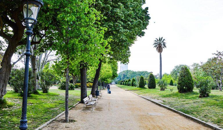 El Parc de la Ciutadella romandrà tancat dos o tres dies per revisar l'arbrat