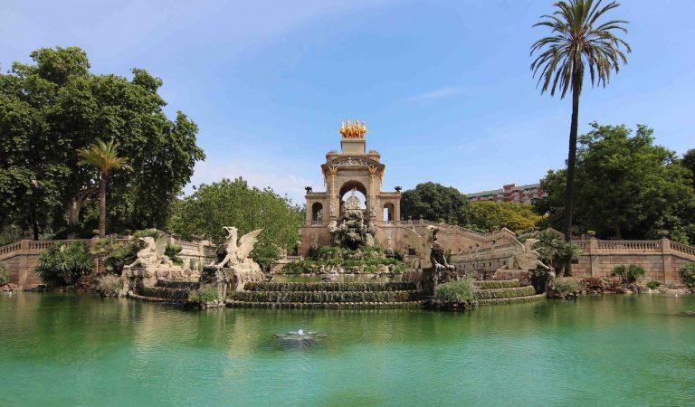 Un home mort i una dona ferida per la caiguda d'una palmera al Parc de la Ciutadella de Barcelona