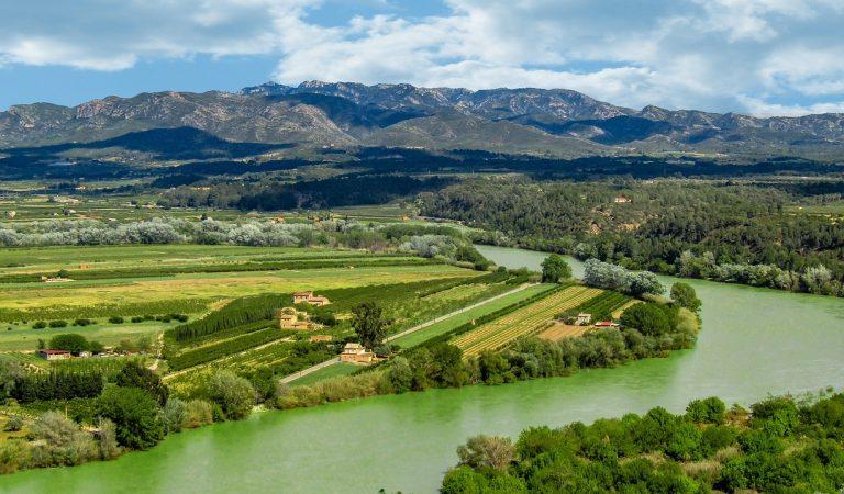 Els rius de Catalunya contaminats per medicaments, metalls pesants i pesticides.