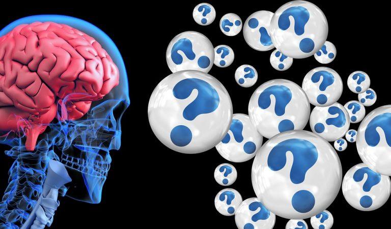 Parlar dues llengües de forma habitual pot ser un sistema de prevenció de l'Alzheimer