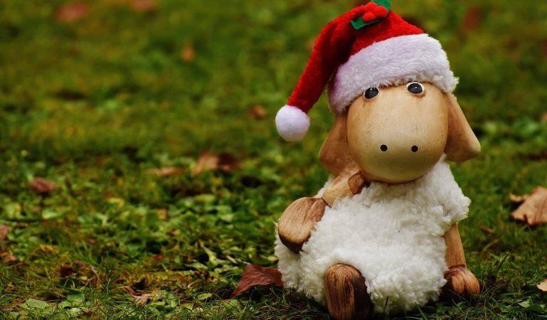 """""""Per Nadal cada ovella al seu corral. Per Sant Esteve, cadascú a casa seva"""" – Per què a Catalunya celebrem Sant Esteve?"""