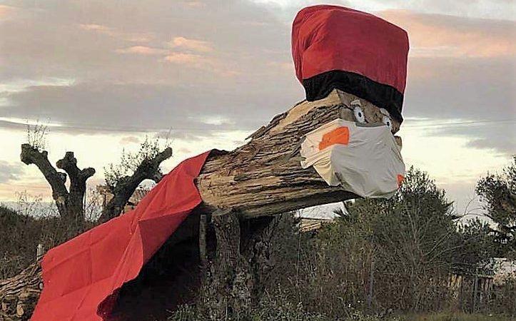 El Tió més gran de Catalunya ja es pot veure a la carretera de Sant Jaume dels Domenys