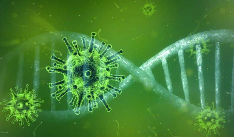 Detectat a Catalunya el primer cas de Coronavirus de la soca britànica