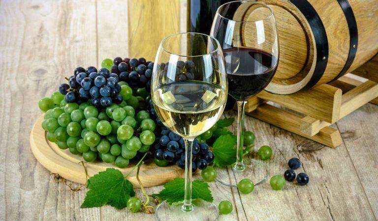 El vi més admirat del món 2021 és català.