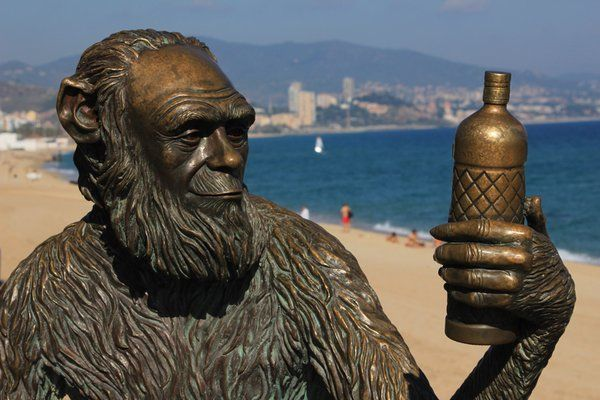 Anís del Mono, trasllada part de la producció a Andalusia. S'emporten part de la nostra història