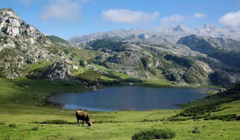 Prohibit banyar-se en els estanys d'alta muntanya
