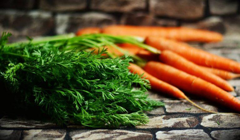 🥕 Sabíeu que la monarquia és la responsable de què les pastanagues siguin de color taronja?